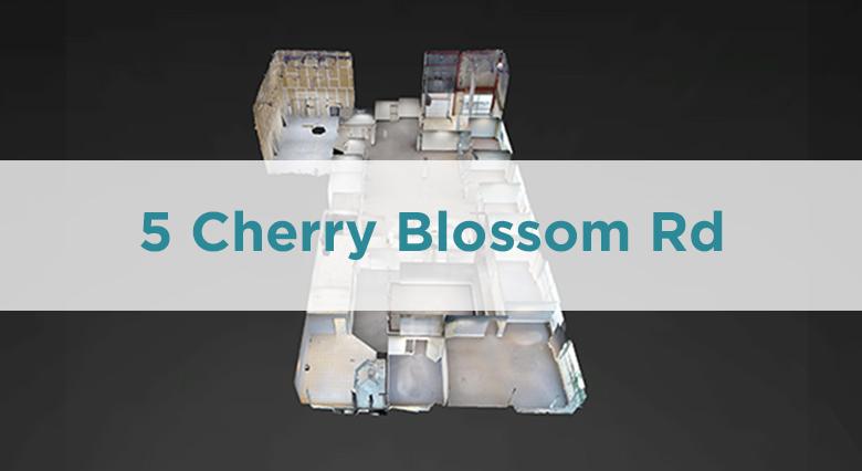 TN - 05 Cherry Blossom